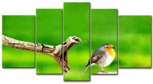 Snake & Bird